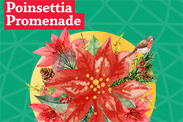 Mitchell Park Domes Holiday Show: Poinsettia Promenade