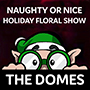 Naughty or Nice Domes Holiday Show Icon