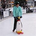 Polar Pal Skate Aid Image