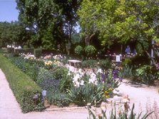 Perennial Borders at Boerner Botanical Gardens